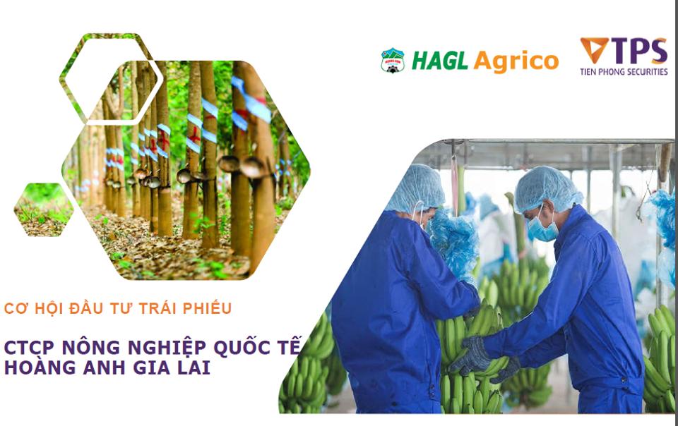 Trái phiếu Cty CP Nông nghiệp Quốc Tế HAGL - HNG.